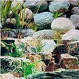 Aquariumh2o - Fondo de doble cara, 40 cm de profundidad, diseño de roca y plantas naturales (120 cm)