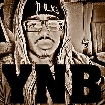 YNB - Single
