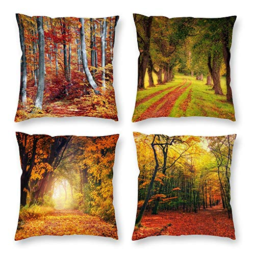 HOSTECCO Fall Pillow Covers Autumn Scenery Nature Throw Pillow Cases Set of 4 Maple Trees Decorative Cushion Covers for Sofa Bed 18x18 inches