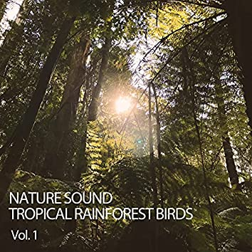 Nature Sound: Tropical Rainforest Birds Vol. 1