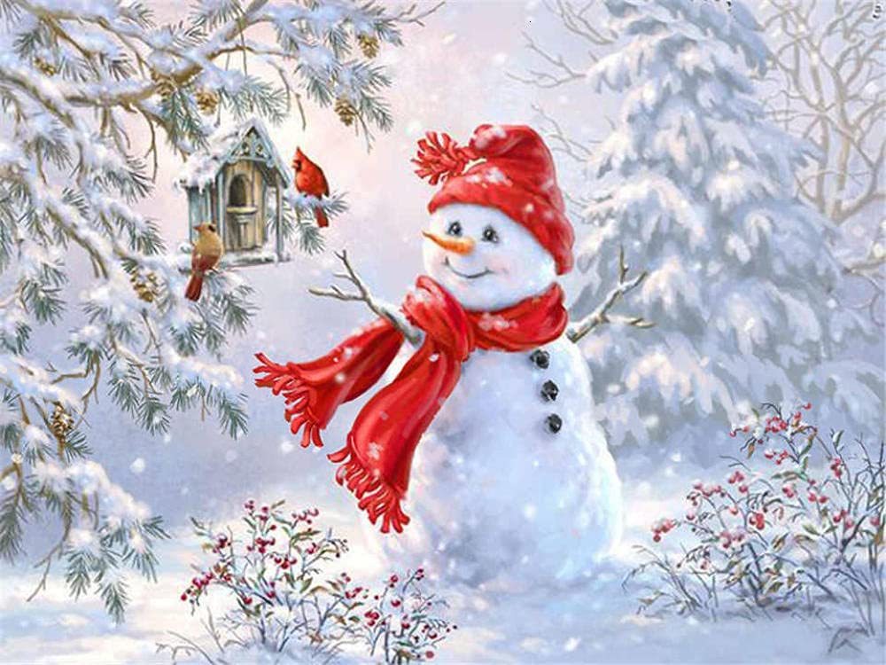 HRKDHBS Paint by Numbers Snowman Acryli 40X50Cm Frame DIY 5 popular with All items free shipping