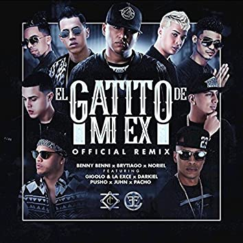El Gatito de Mi Ex (Remix)