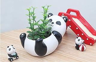 Haoyajia Panda/Zebra/Giraffe Succulents Pot/Planters 3.5 inch Cute Animal Ceramic Flower Pot/Planter Best Gifts for Family...