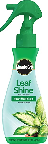 Miracle Gro Leaf Shine 8 Ounce