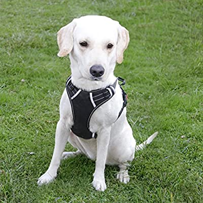 Menkar Dog Harness No Pull Pet Vest Adjustable Outdoor Reflective Oxford Material Easy Control for Medium Large Breed Dogs