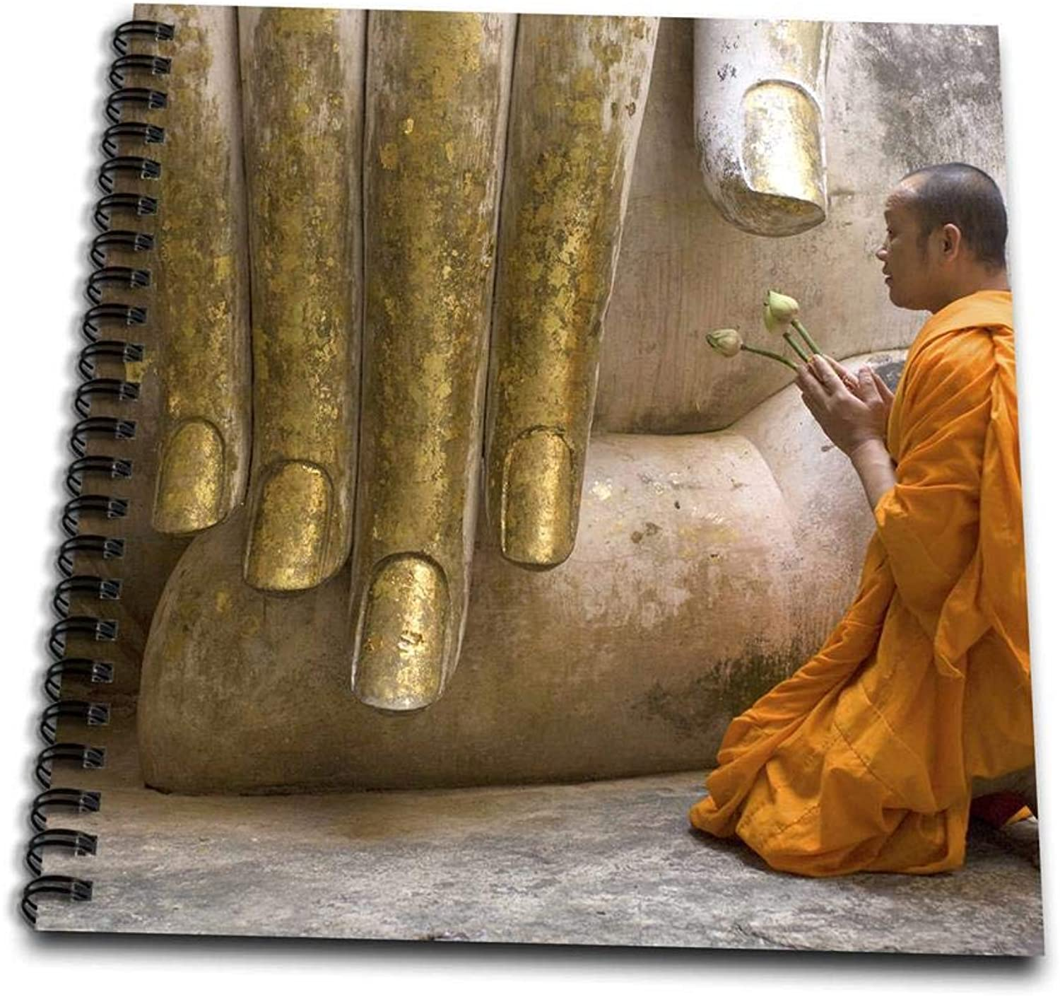 3dpink Buddhist Monk Making Offering To Wat Si Chum Buddha-AS36 AWR0006 Alison Wright Memory Book, 12 by 12