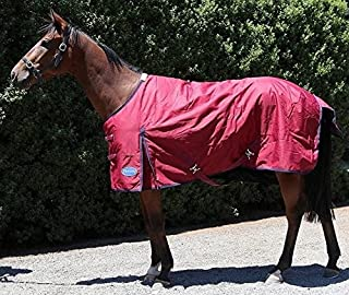 Barnsby Equestrian Waterproof Horse Winter Blanket/Turnout Rug - Standard Neck - 600 Denier with 200g Fill