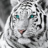 Reofrey Diamond Painting 5D Diamant Peinture Tigre Blanc DIY Cristal Strass Peinture Plein Forage Broderie Artisanat Point De Croix Chambre Salon Décoration Murale 35x35cm…