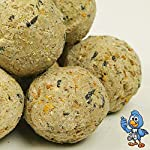 BusyBeaks Suet Fat Balls | Premium Garden Wild Bird Food | Enhanced Year-Round Formula | Naturally Blended High in Energy & Protein-Rich Feed | Full of Fresh Nutritious Fat Fibre & Moisture