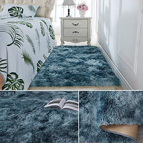 YWUAEN Modern Area Rugs,rectangular Super Soft Rugs,velvet Non Slip Easy To Clean Non Shed Rugs,for Kids Rooms Living Room Bedroom Carpet Aqua Green 60x200cm(24x79inch)