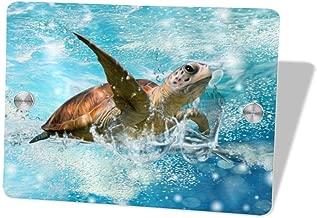 NQDoo Sea Turtle Door Sign 5.57.5 in,Wall Hanging Decorative Signs for Boy's&Girl's Bedroom/Kitchen Room/Outdoor