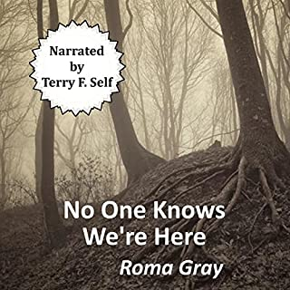 No One Knows We're Here audiobook cover art