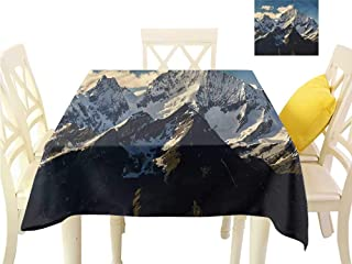 WilliamsDecor Summer Table Cloths Mountain,View of Alps Mountain Dining Table Cover W 54