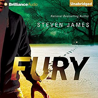 Fury audiobook cover art