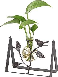 Marbrasse Desktop Glass Planter Hydroponics Vase,Planter Bulb Vase with Holder for Home Decoration,Modern Creative Bird Pl...