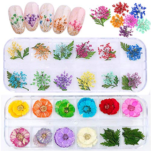 2 Boxes Real Natural Dried Flowers for Nail Art, Mwoot 22 Colors Dry Flowers with green Leaves Nail Art Supplies 3D Applique Nail Decoration Sticker for Tips Manicure Décor