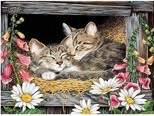 Diamond Embroidery Washington Bombing free shipping Mall Large DIY 5D Kits Painting Cat Flower