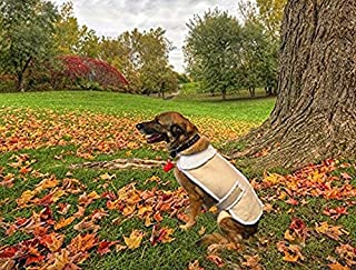 CT DISCOUNT STORE Shearling Fleece Winter Dog Jackets