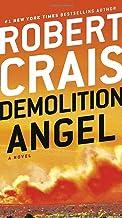 Demolition Angel: A Novel