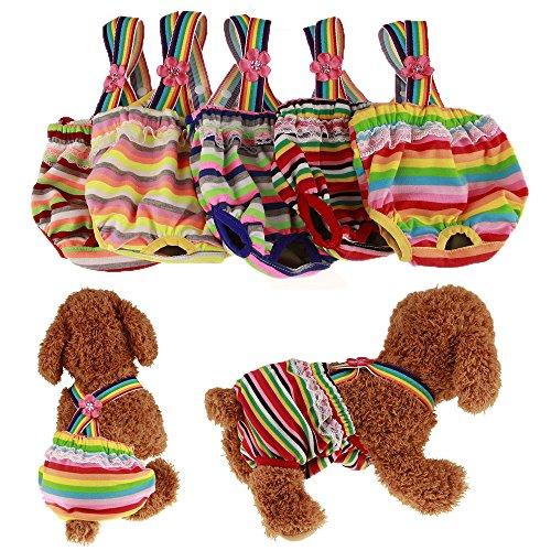 RC GearPro Waschbare 2-Pack-Hundewindeln, Haustier-Hygienehose mit Hosenträger für Hündinnen, Farbe zufällig (L)