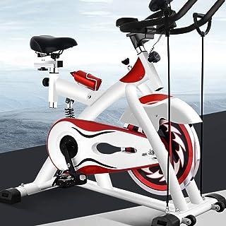 Home Spinning Bike, Ultra-Quiet Bicycle Indoor Sports Bike, Fat Burning Weight Loss Fitness Equipment, 12KG Flywheel, Aero...