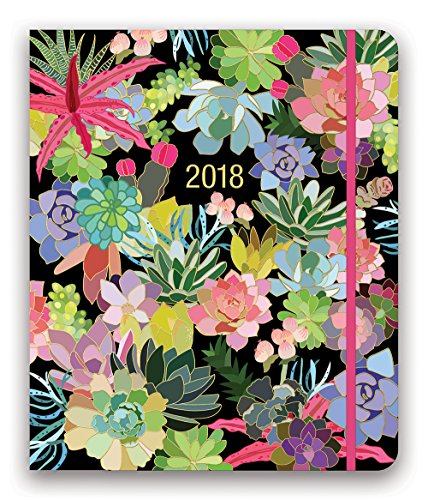 """Hidden Spiral Monthly Agenda 2021 in Succulent Paradise by Orange Circle Studio - 8"""" x 10"""" 17-Month Hardcover Spiral Planner with Daily & Weekly Views, Tabbed Sections & Storage Pocket"""