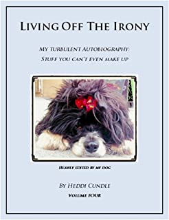 Living Off The Irony: My Turbulent Autobiography (Living Off The Irony Book 4)