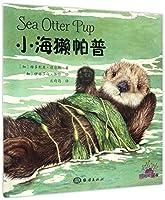 小海獭帕普