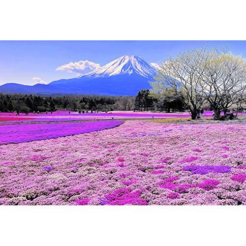 JW-MZPT Monte Fuji 500