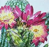 HRSDYJ Pintura por Números para Adultos y Niños Cactus Dibujos para Pintar con Números, DIY Pintura al Óleo por Números Decoración del Hogar 40 x 50 cm