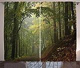 Waple Cortinas opacas ojete para sala de estar Paisaje de bosque otoñal de ensueño brumoso 170*200cm Cortinas Impresas 3D Foto Tela De Poliéster Reducción De Ruido con Aislante Térmico Opaco para Dorm