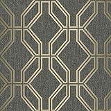 Highgrove Trellis Duplex Wallpaper Black/Gold Rasch 275284