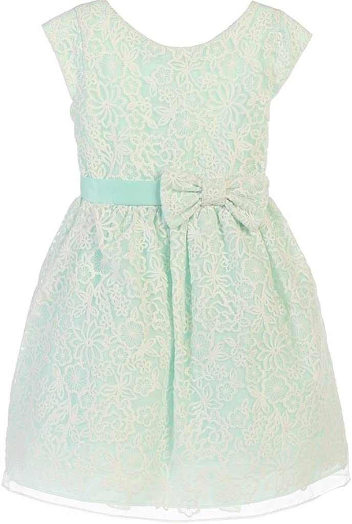 BluNight Collection Cap Sleeve Embroidered Organza Bow Little Girl Special Occasion Dresses