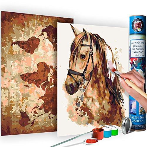 murando Malen nach Zahlen Weltkarte & Pferd 100x90 cm 2 Motiven Kit Malset Für Erwachsene und Kinder ab 12 Design Geschenk-Tube DIY Gemälde Handgemalt n-A-0347-ab-r