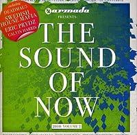 Vol. 2-Sound of Now 2010
