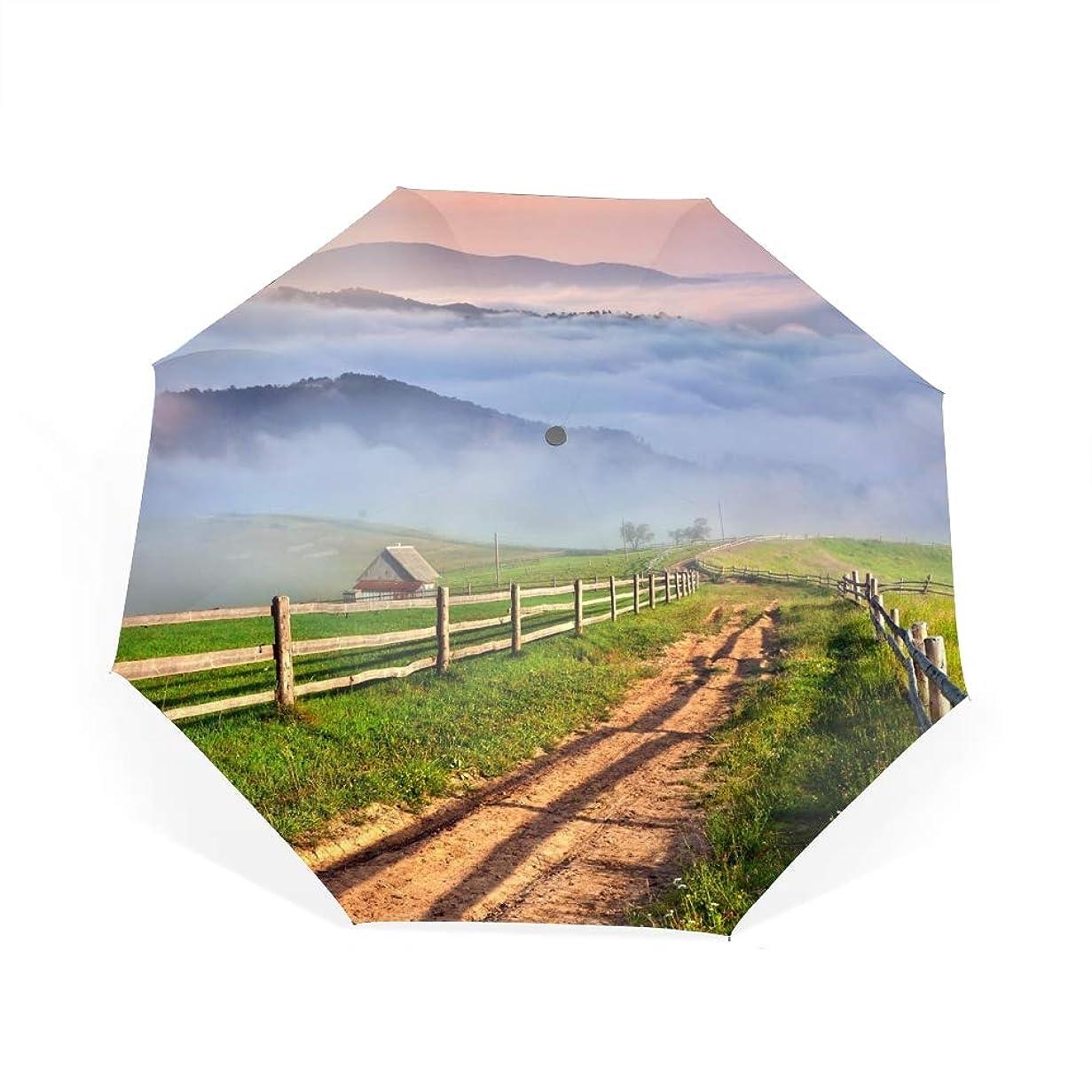 一流顕微鏡貼り直す田舎の山の芝生自動開閉折り畳み傘 2重構造 耐風撥水8本骨 男女兼用 丈夫 大型 大きな傘 梅雨対策 収納ポーチ付き