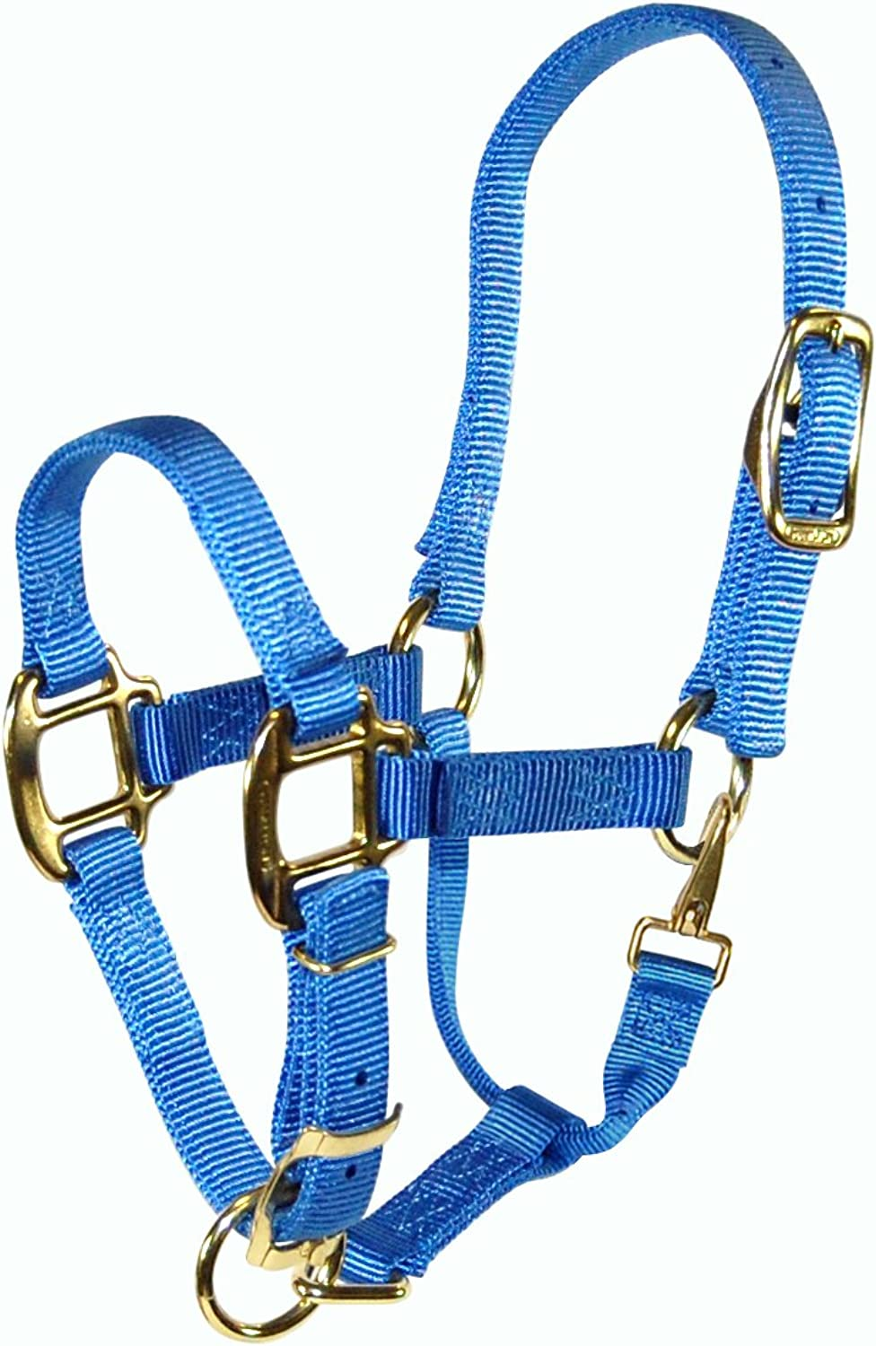 Hamilton 3 4 Adjustable Quality Weanling Halter with Snap, Berry blueee