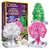 NATIONAL GEOGRAPHIC Crystal Growing Garden – Grow 3 Crystal Trees in...