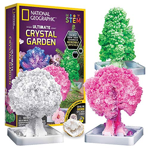 NATIONAL GEOGRAPHIC Crystal Growing Garden – Grow 3 Crystal Trees in Just 6 Hours with This...