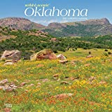 Oklahoma Wild & Scenic 2021 12 x 12 Inch Monthly Square Wall Calendar, USA United States of America Southwest State Nature