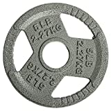 Sporzon! Cast Iron Olympic 2-Inch Grip Plate Weight Plate for Strength Training, Weightlifting and Crossfit, Single, Gray