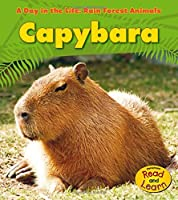 Capybara (A Day in the Life: Rain Forest Animals) by Anita Ganeri(2010-09-01)