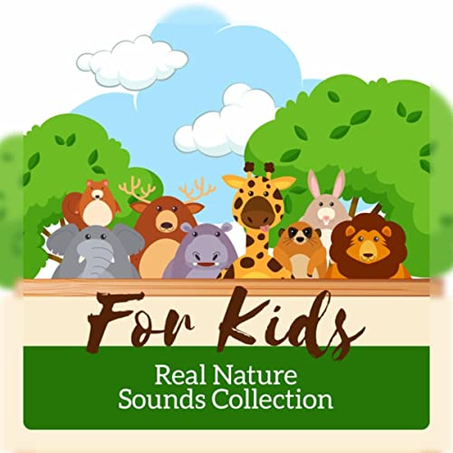 Is Mindfulness Meditation Good For Kids >> For Kids Real Nature Sounds Collection To Help Children Learn
