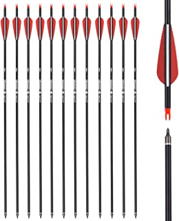 Carbon Arrow Hunting Arrows with 100 Grain Removable Tips for Archery Compound & Recurve & Traditional Bow Practice Shooting (Pack of 12)