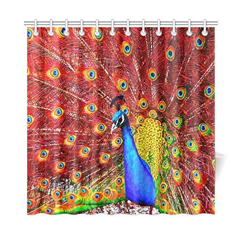 JOCHUAN Décor à la Maison Rideau De Bain Peinture Numérique d'un Beau Rideau De Douche Imperméable en Tissu De Polyester De Paon pour Salle De Bains, 72 X 72 Crochets De Rideaux De Douche Inclus