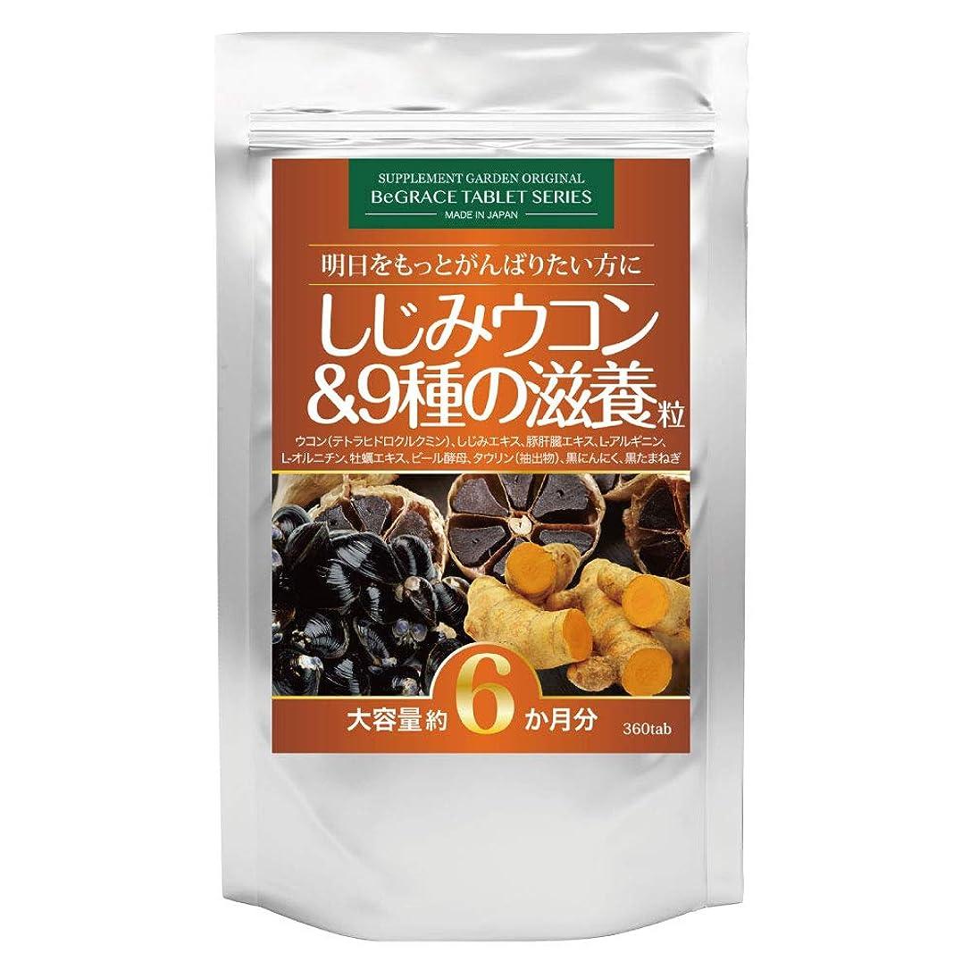 細部カップルフライカイトしじみウコン&9種の滋養粒 大容量約6ヶ月分/360粒(クルクミン3600mg高配合ウコン、オルニチン3600mg、肝臓エキス10800mg、L-アルギニン、牡蠣エキス、亜鉛含有酵母、タウリン、黒にんにく、黒たまねぎ)