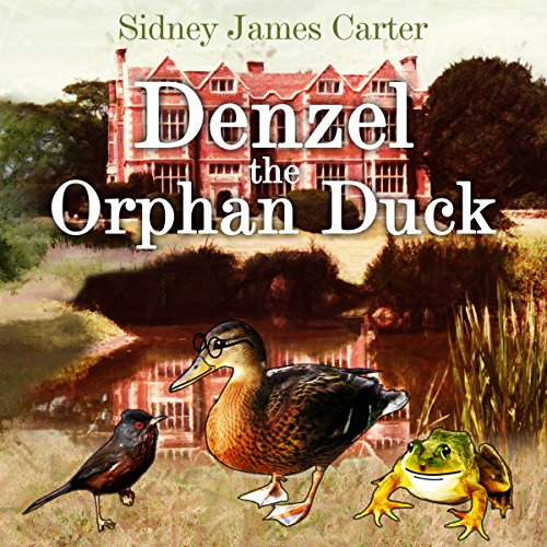 Denzel the Orphan Duck cover art