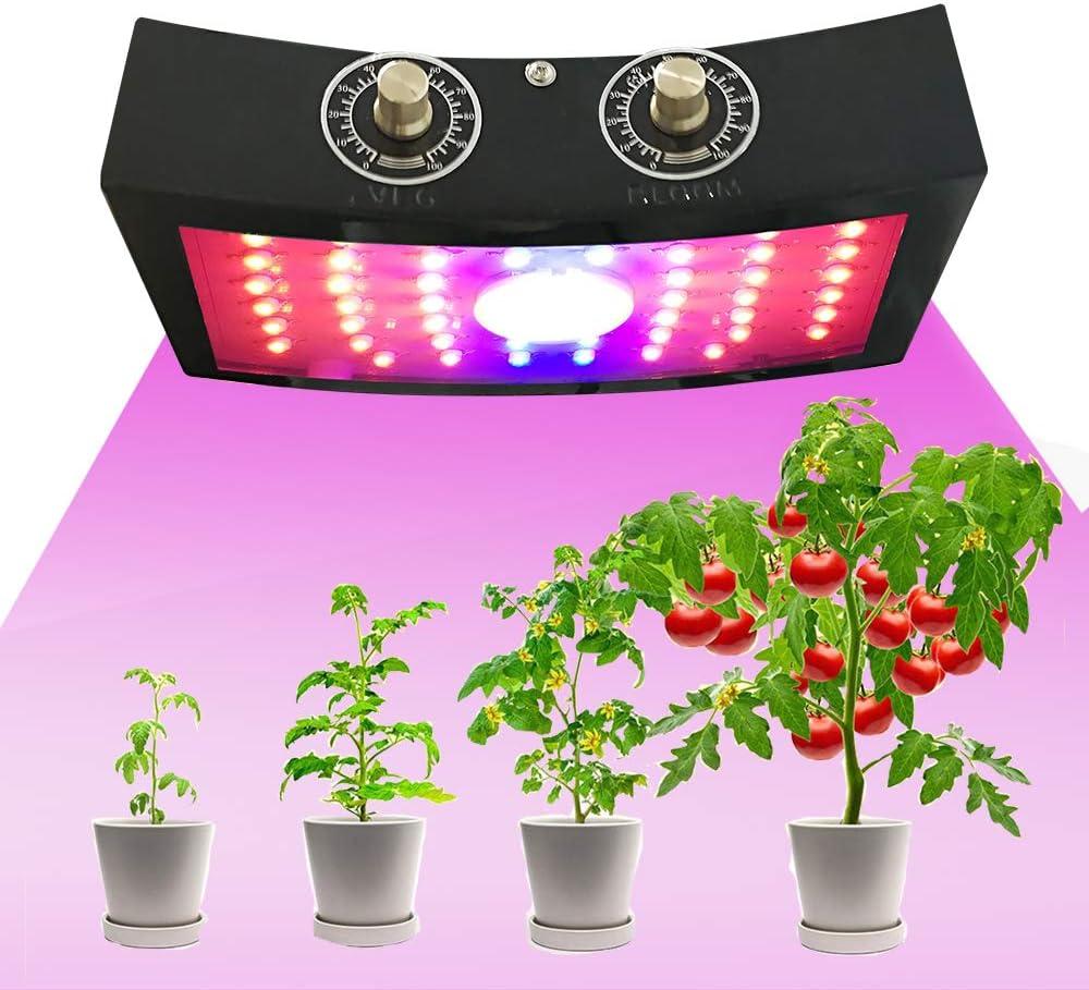 1000 Watt Led COB Grow Light for tomatoes