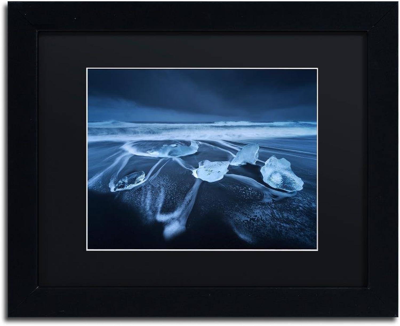 Trademark Fine Art The Ice Age by Mathieu Rivrin, Black Matte, Black Frame 11x14