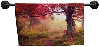 xixiBO Beach Towel W 39 x L 16(inch) Pattern Towel,Landscape,Majestic Landscape with Colorful Autumn Trees Foggy Forest Ukraine Image,Dark Coral Green